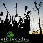 AG1: Wikiwoods